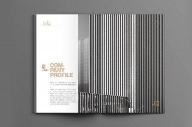 北京守望领域科技有限公司画册制作,公司宣传册设计定